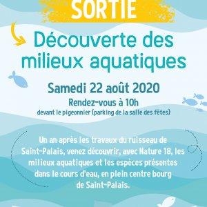 Affiche sortie Milieux aquatiques - Saint Palais-01